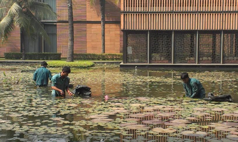 Lotus pond cleaners, ITC Shonar