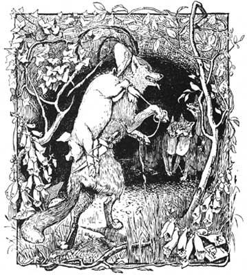 pigs-wolf