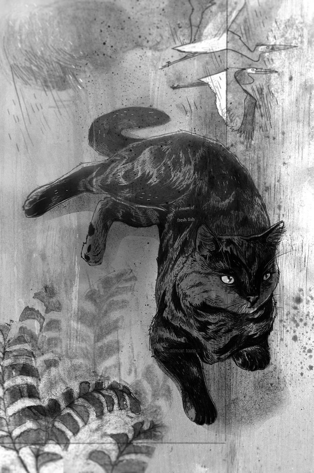 The cat and the egrets: illustration ©Prabha Mallya and AlephBookCompany.
