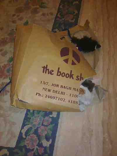 bath-bookbag
