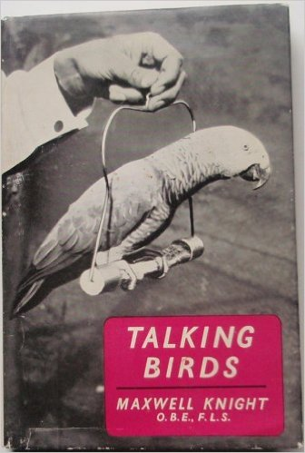 knightbirds-correct
