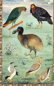 mansur-turkey