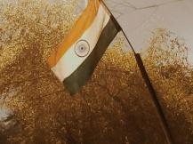 Tricolour, Shaheen Bagh
