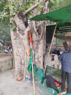 Flag, Mandi House